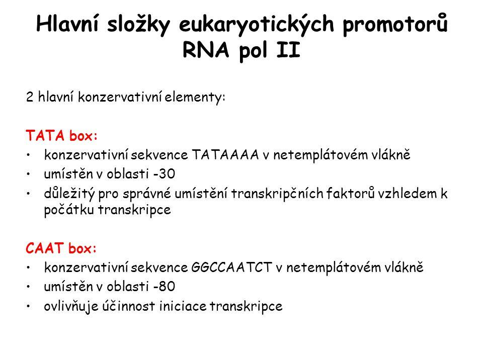 Hlavní složky eukaryotických promotorů RNA pol II 2 hlavní konzervativní elementy: TATA box: konzervativní sekvence TATAAAA v netemplátovém vlákně umí