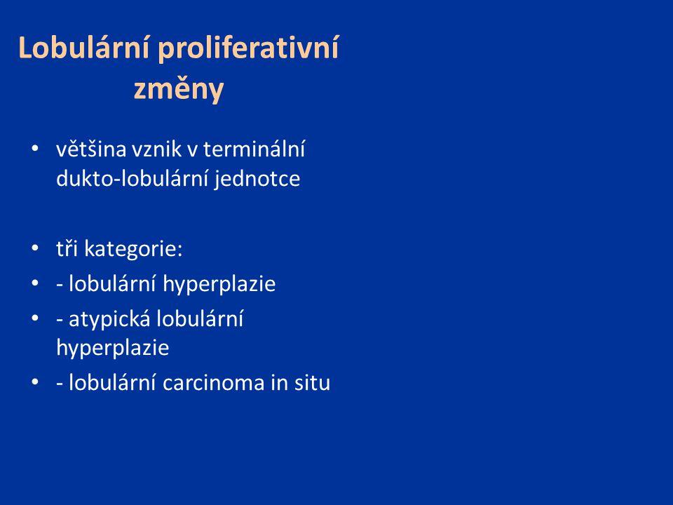 Lobulární proliferativní změny většina vznik v terminální dukto-lobulární jednotce tři kategorie: - lobulární hyperplazie - atypická lobulární hyperpl