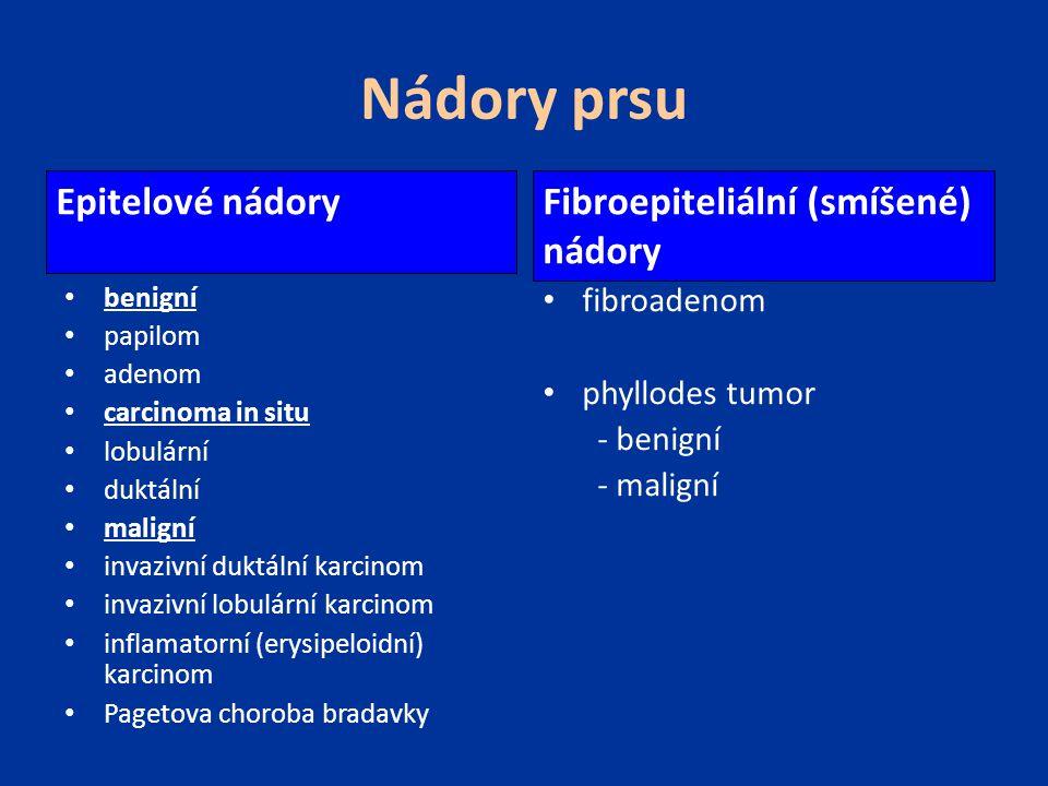 Rizikové faktory (vysoké riziko) věk (největší nárůst incidence po 50 roce věku) geografická lokalizace (vyspělé země- Severní Amerika, Evropa) anamnéza předchozího karcinomu prsu atypická hyperplazie (zejména ve spojení s rodinnou anamnézou) rodinná anamnéza - bilaterální karcinom prsu či karcinom prsu v premenopauze v 1.