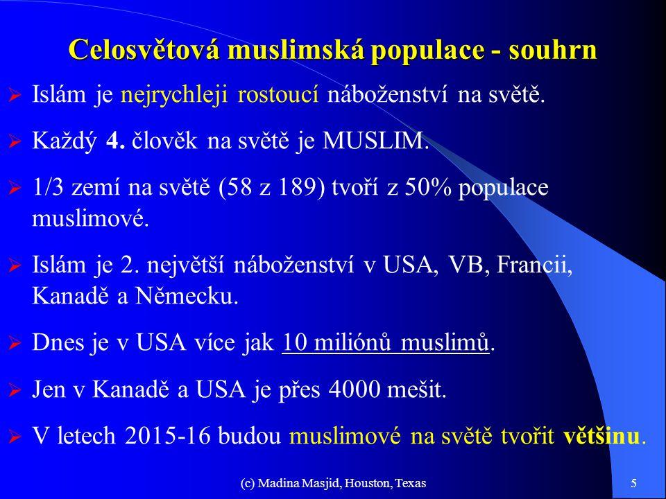 Celková populace muslimů na světě. Populace muslimů ve světě 18% Arabové 82% Ne-Arabové 20% Afrika 10% Turecko, Írán, Afghánistán 30% Indický poloostr