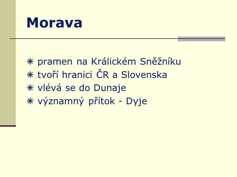 Morava  pramen na Králickém Sněžníku  tvoří hranici ČR a Slovenska  vlévá se do Dunaje  významný přítok - Dyje