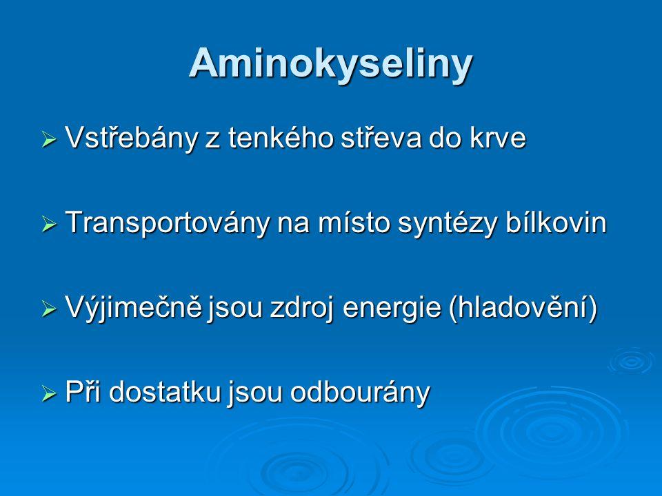 Metabolismus aminokyselin 1.