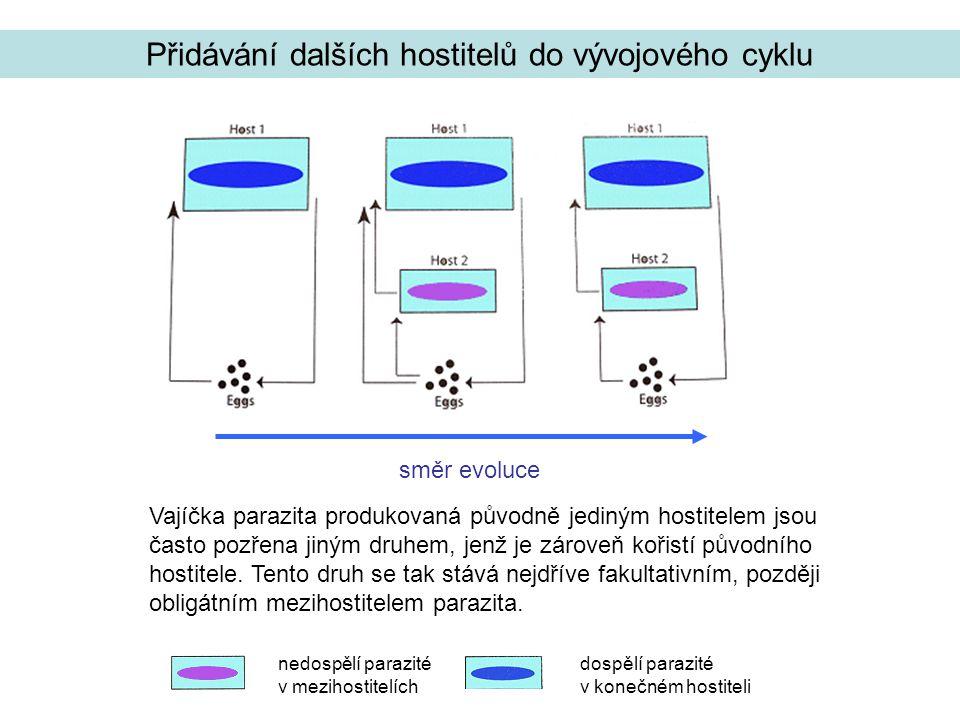 Přidávání dalších hostitelů do vývojového cyklu Vajíčka parazita produkovaná původně jediným hostitelem jsou často pozřena jiným druhem, jenž je zároveň kořistí původního hostitele.