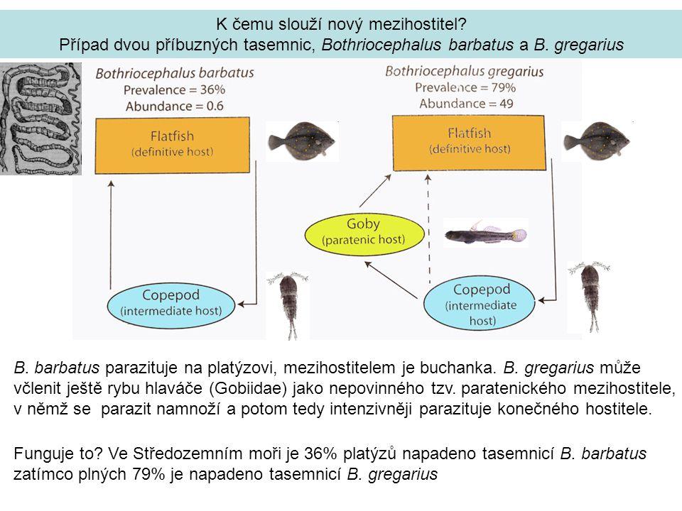 K čemu slouží nový mezihostitel.Případ dvou příbuzných tasemnic, Bothriocephalus barbatus a B.