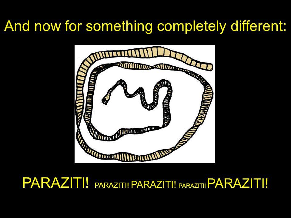 I parazité mohou být elegantní Schistosoma mansoni (bilharzióza) Pediculus humanus (veš) Ancylostoma duodenale (měchovec) Trypanosoma brucei (spavá nemoc) Taenia solium (tasemnice) Giardia lamblia (střevní parazit)