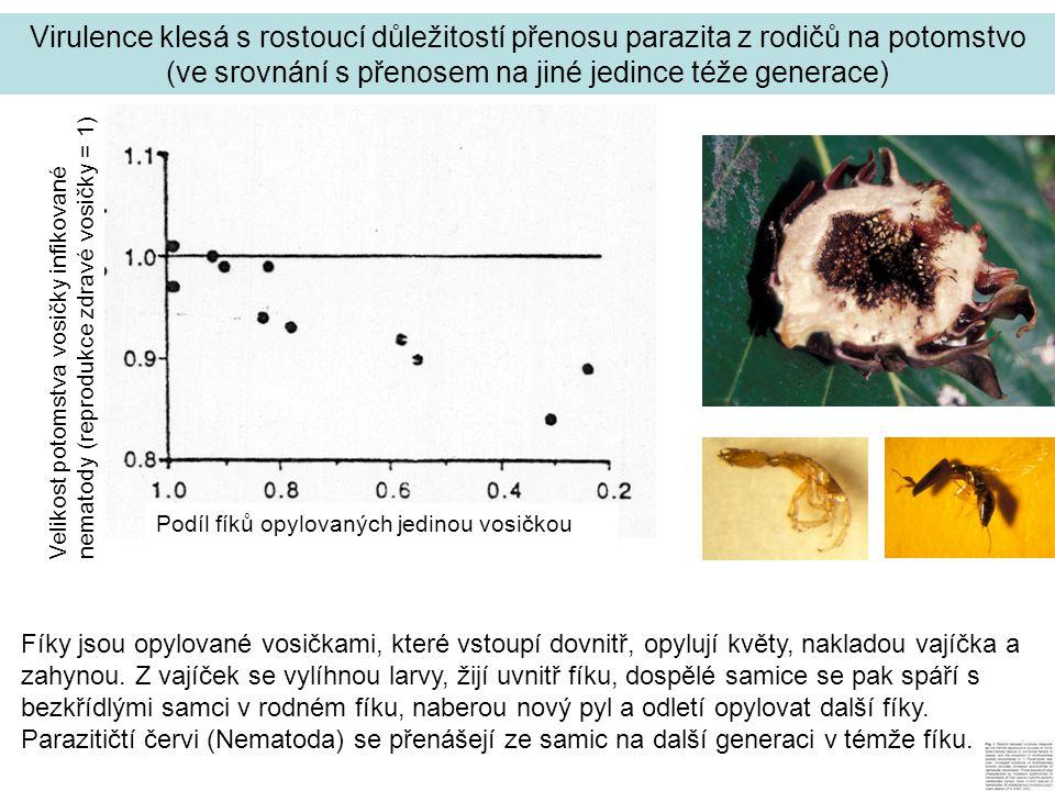 Virulence klesá s rostoucí důležitostí přenosu parazita z rodičů na potomstvo (ve srovnání s přenosem na jiné jedince téže generace) Podíl fíků opylovaných jedinou vosičkou Velikost potomstva vosičky infikované nematody (reprodukce zdravé vosičky = 1) Fíky jsou opylované vosičkami, které vstoupí dovnitř, opylují květy, nakladou vajíčka a zahynou.