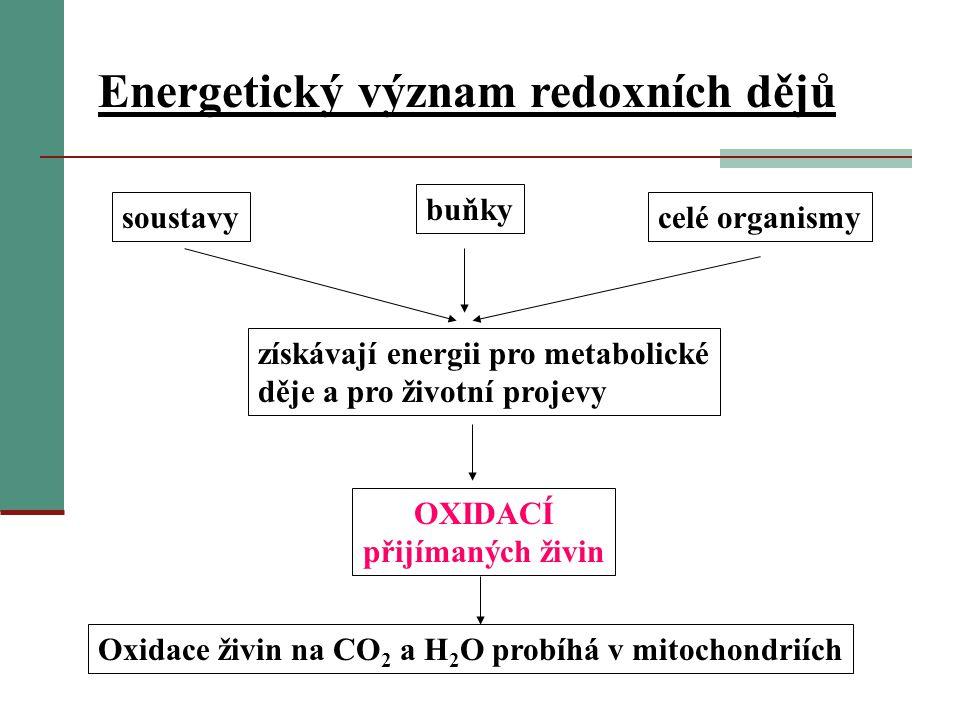 Energetický význam redoxních dějů soustavy buňky celé organismy získávají energii pro metabolické děje a pro životní projevy OXIDACÍ přijímaných živin