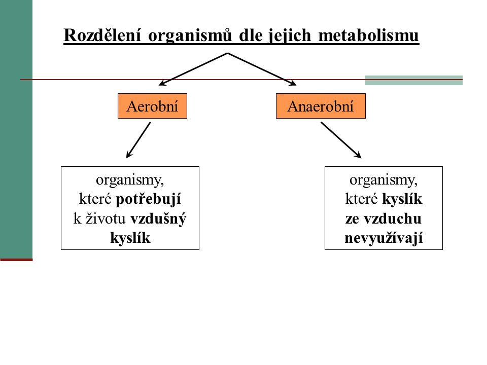 Rozdělení organismů dle jejich metabolismu organismy, které potřebují k životu vzdušný kyslík organismy, které kyslík ze vzduchu nevyužívají AerobníAn