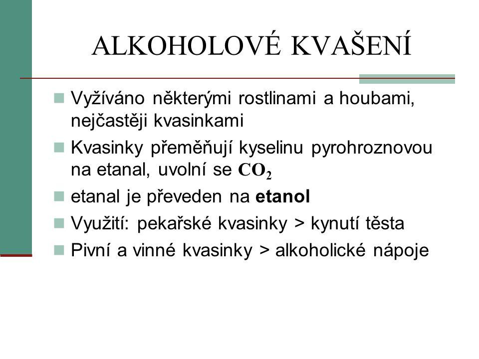 ALKOHOLOVÉ KVAŠENÍ  Vyžíváno některými rostlinami a houbami, nejčastěji kvasinkami  Kvasinky přeměňují kyselinu pyrohroznovou na etanal, uvolní se C