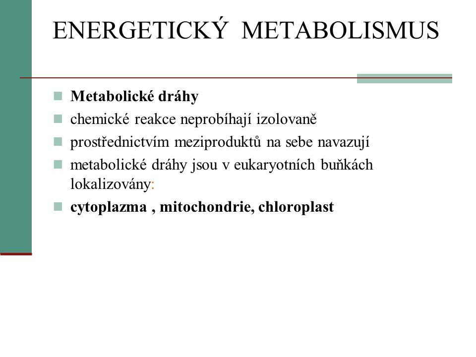 ENERGETICKÝ METABOLISMUS  Metabolické dráhy  chemické reakce neprobíhají izolovaně  prostřednictvím meziproduktů na sebe navazují  metabolické drá