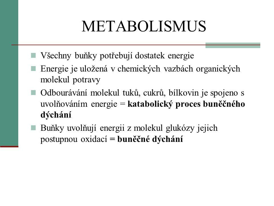 METABOLISMUS  Energie se postupně uvolňuje a je ukládána do molekul ATP  Jestliže je u z molekul ATP odstraněna fosfátová skupina, energie se snadno a rychle uvolní a buňce k dispozici:  ATP > ADP + P + energie  NADH – vzniká v průběhu buněčného dýchání, slouží jako nosiče elektronů