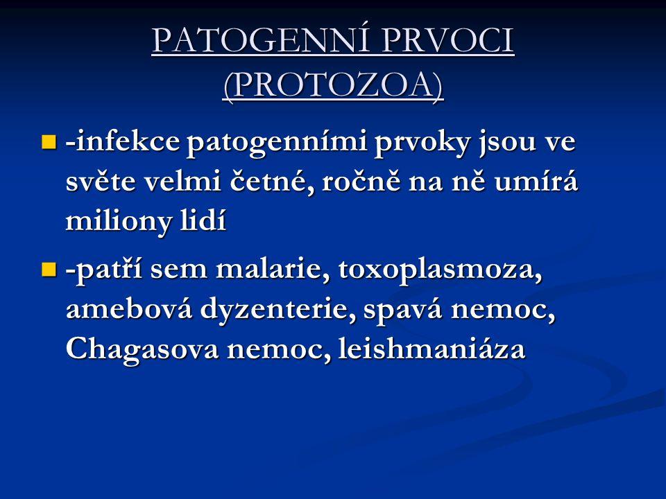 Malarie  -malarii u člověka způsobují 4 druhy Plasmodium falciparum- nejč., P.