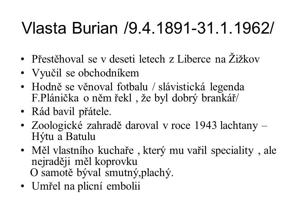 Vlasta Burian /9.4.1891-31.1.1962/ •Přestěhoval se v deseti letech z Liberce na Žižkov •Vyučil se obchodníkem •Hodně se věnoval fotbalu / slávistická