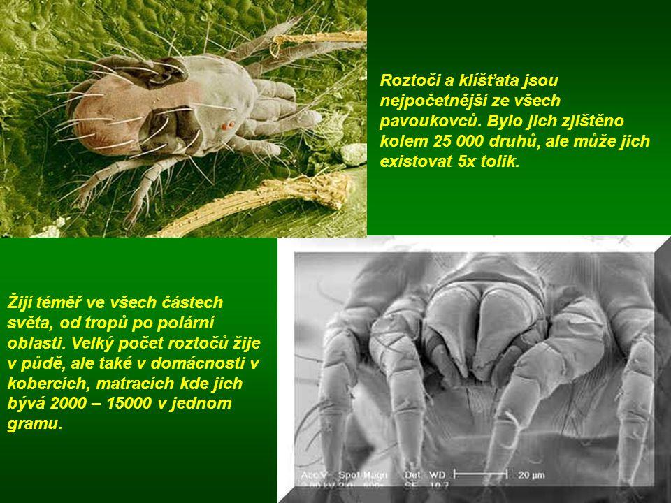 Roztoči a klíšťata jsou nejpočetnější ze všech pavoukovců. Bylo jich zjištěno kolem 25 000 druhů, ale může jich existovat 5x tolik. Žijí téměř ve všec