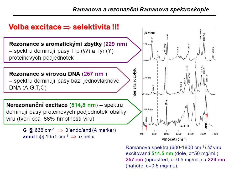 Ramanova spektra (600-1800 cm -1 ) fd viru excitovaná 514.5 nm (dole, c=50 mg/mL), 257 nm (uprostřed, c=0.5 mg/mL) a 229 nm (nahoře, c=0.5 mg/mL). Rez
