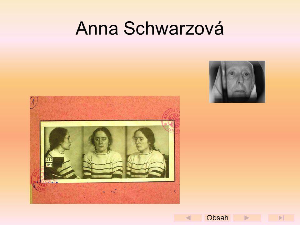 Anna Schwarzová Obsah