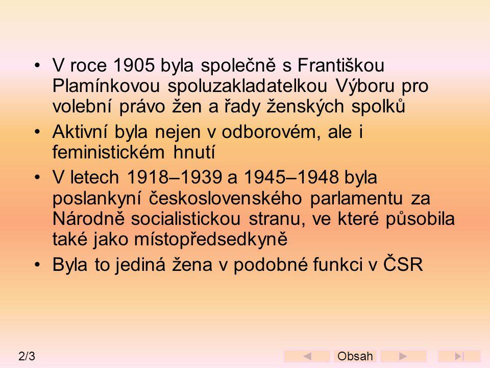•V roce 1905 byla společně s Františkou Plamínkovou spoluzakladatelkou Výboru pro volební právo žen a řady ženských spolků •Aktivní byla nejen v odbor