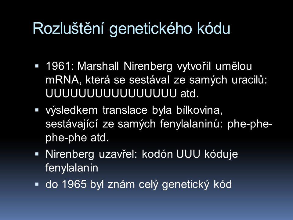 Rozluštění genetického kódu  1961: Marshall Nirenberg vytvořil umělou mRNA, která se sestával ze samých uracilů: UUUUUUUUUUUUUUUU atd.