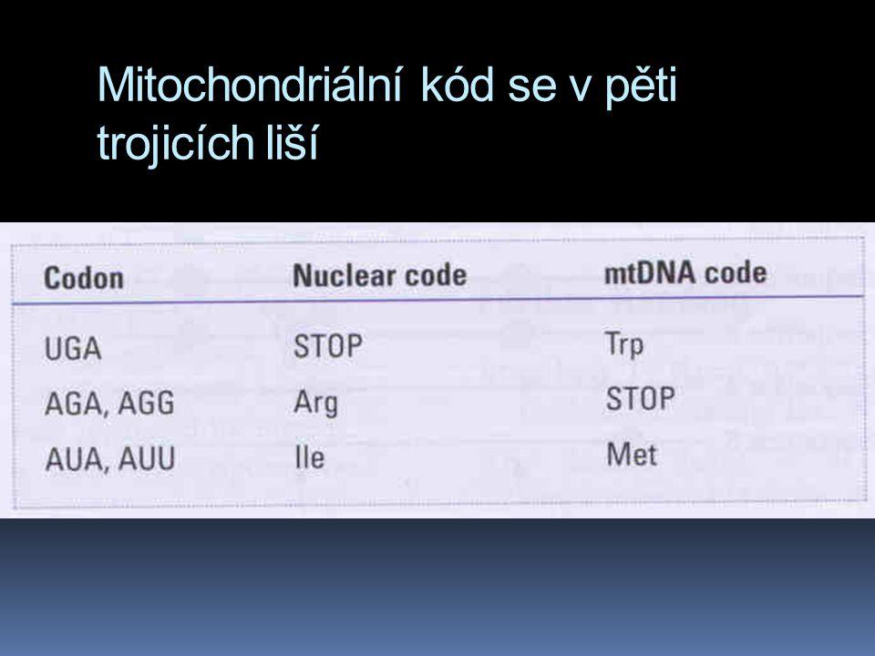 Mitochondriální kód se v pěti trojicích liší