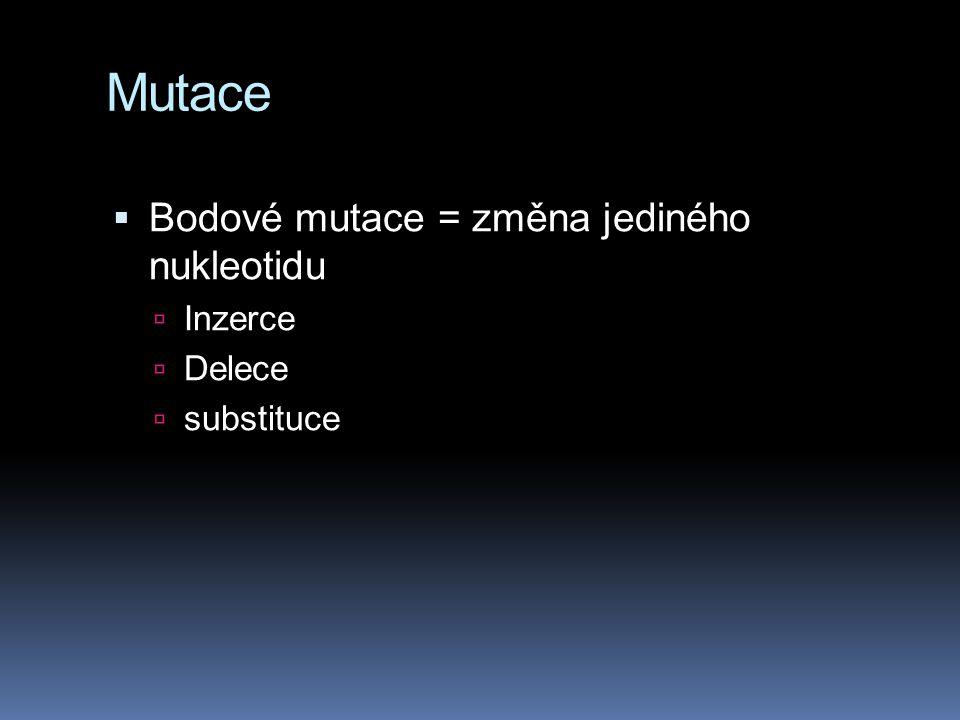Mutace  Bodové mutace = změna jediného nukleotidu  Inzerce  Delece  substituce