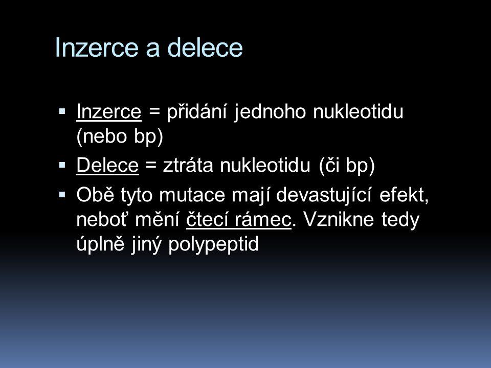 Inzerce a delece  Inzerce = přidání jednoho nukleotidu (nebo bp)  Delece = ztráta nukleotidu (či bp)  Obě tyto mutace mají devastující efekt, neboť mění čtecí rámec.