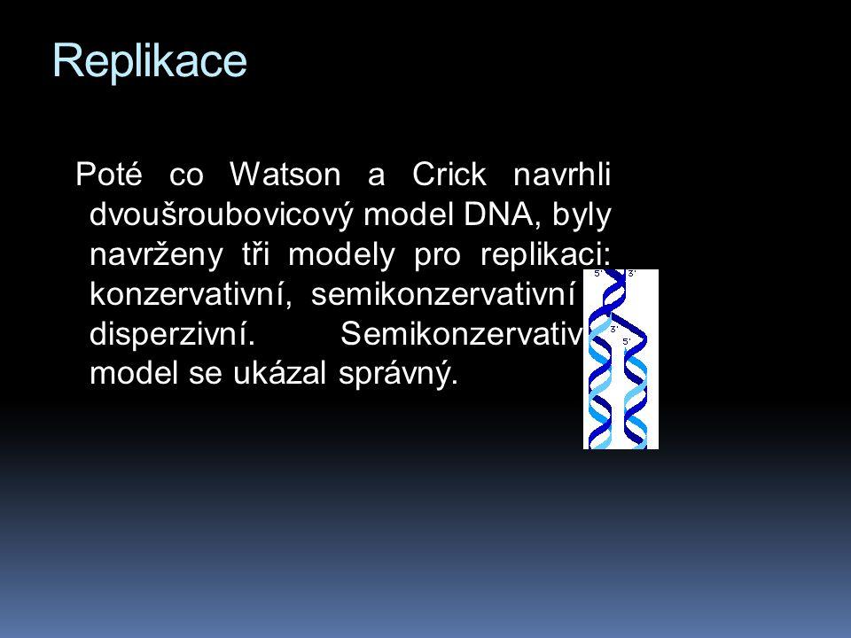 Replikace Poté co Watson a Crick navrhli dvoušroubovicový model DNA, byly navrženy tři modely pro replikaci: konzervativní, semikonzervativní a disperzivní.