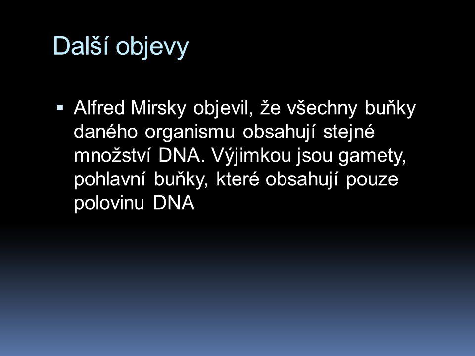 Další objevy  Alfred Mirsky objevil, že všechny buňky daného organismu obsahují stejné množství DNA.