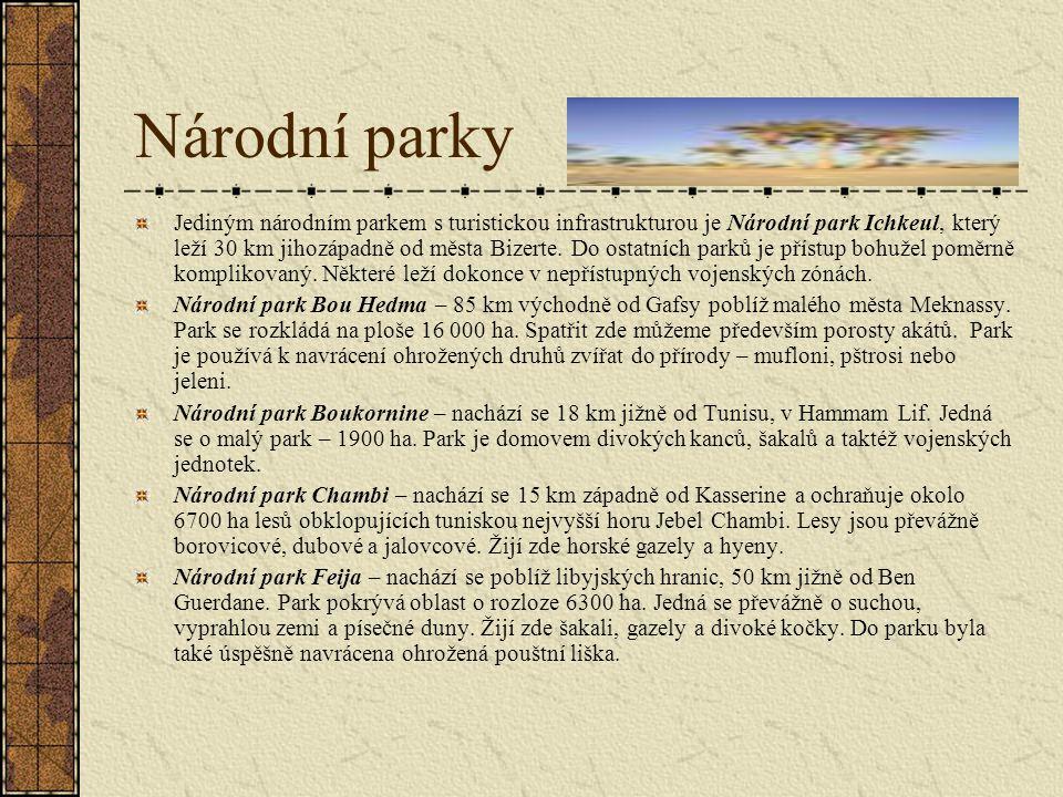 Národní parky Jediným národním parkem s turistickou infrastrukturou je Národní park Ichkeul, který leží 30 km jihozápadně od města Bizerte.