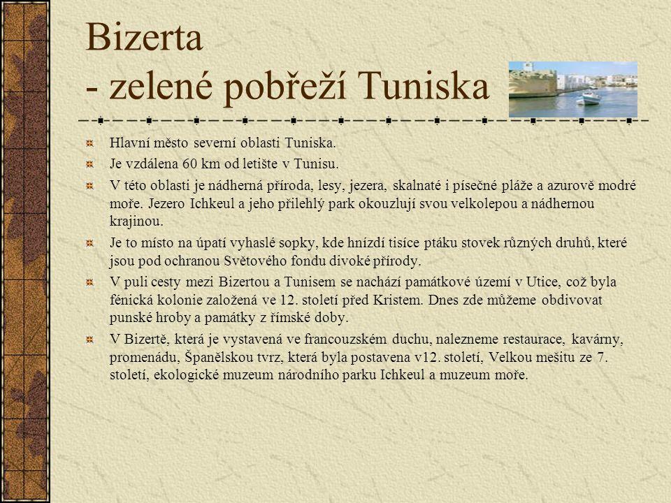 Bizerta - zelené pobřeží Tuniska Hlavní město severní oblasti Tuniska.