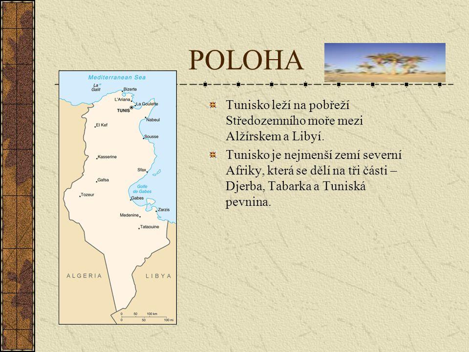 Povrch Tunisko má dlouhé, poměrně členité pobřeží s výrazným Gábeským zálivem zvaným Malá Syrta a několika ostrovy, z nichž největší je Džerba.