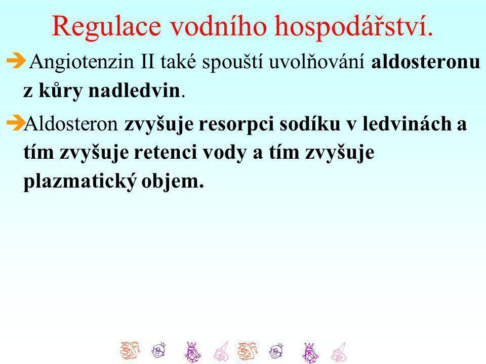 Regulace vodního hospodářství.  Angiotenzin II také spouští uvolňování aldosteronu z kůry nadledvin.  Aldosteron zvyšuje resorpci sodíku v ledvinách