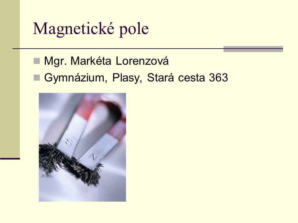 Magnetické pole  Mgr. Markéta Lorenzová  Gymnázium, Plasy, Stará cesta 363