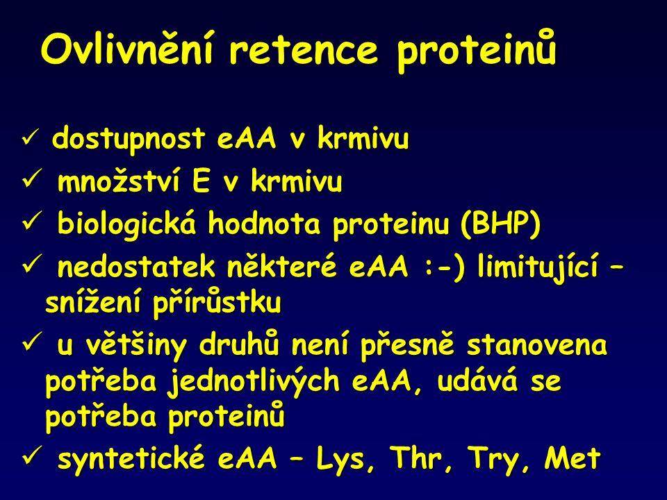 Ovlivnění retence proteinů dostupnost eAA v krmivu  dostupnost eAA v krmivu  množství E v krmivu  biologická hodnota proteinu (BHP)  nedostatek ně