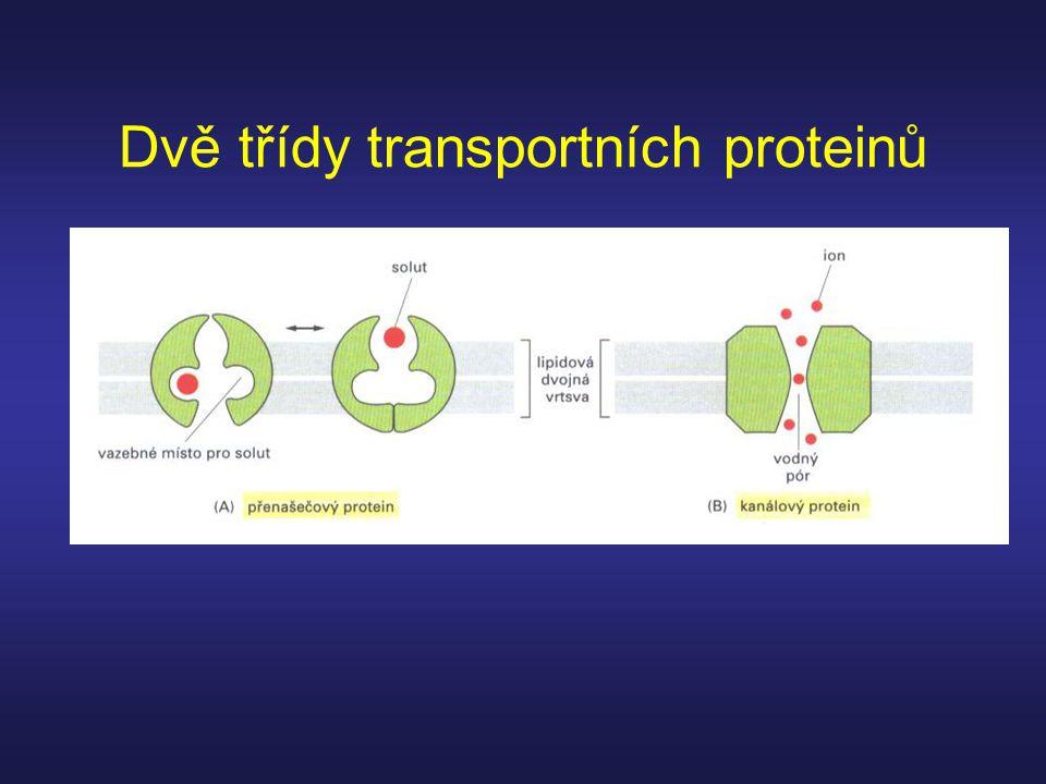 Dvě třídy transportních proteinů