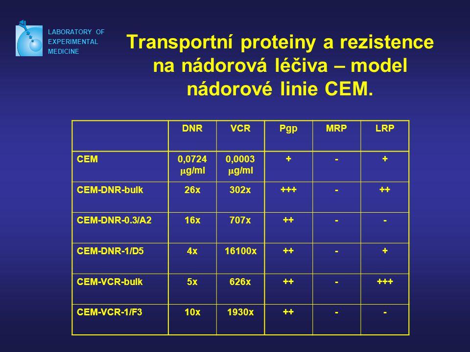 Transportní proteiny a rezistence na nádorová léčiva – model nádorové linie CEM.