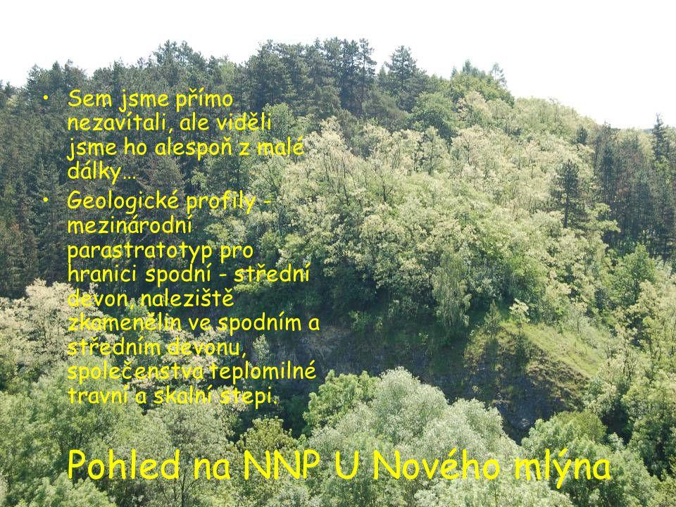 Pohled na NNP U Nového mlýna •Sem jsme přímo nezavítali, ale viděli jsme ho alespoň z malé dálky… •Geologické profily - mezinárodní parastratotyp pro