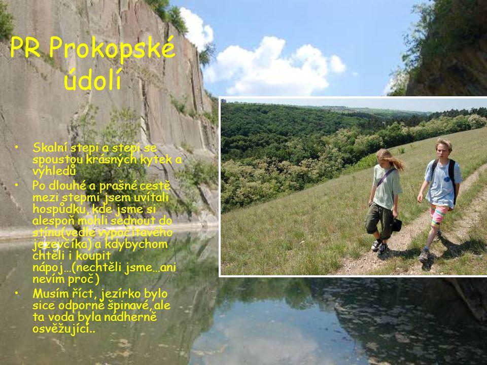PR Prokopské údolí •Skalní stepi a stepi se spoustou krásných kytek a výhledů •Po dlouhé a prašné cestě mezi stepmi jsem uvítali hospůdku, kde jsme si
