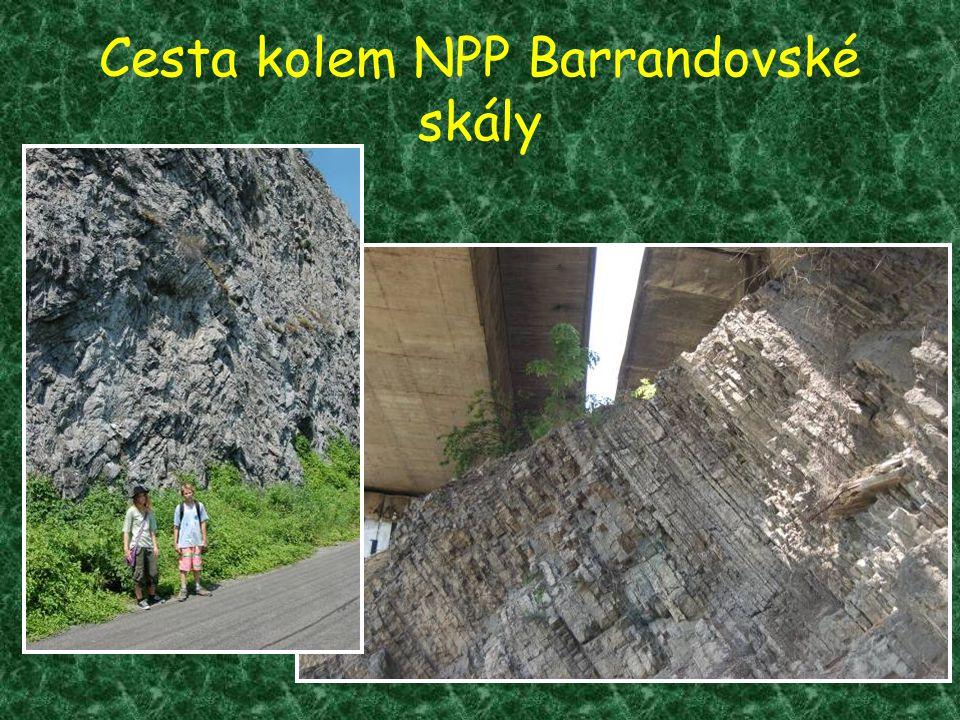 Cesta kolem NPP Barrandovské skály