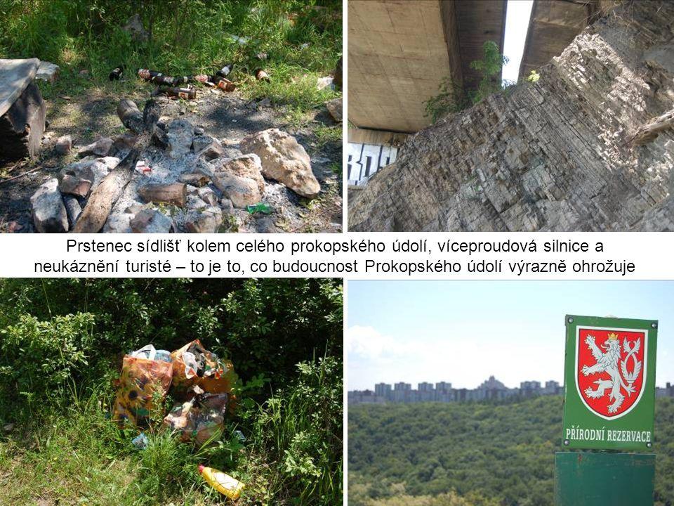 Prstenec sídlišť kolem celého prokopského údolí, víceproudová silnice a neukáznění turisté – to je to, co budoucnost Prokopského údolí výrazně ohrožuj