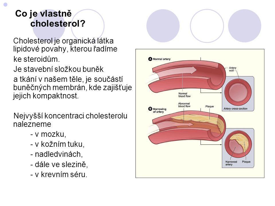  Kde a jak se cholesterol tvoří.