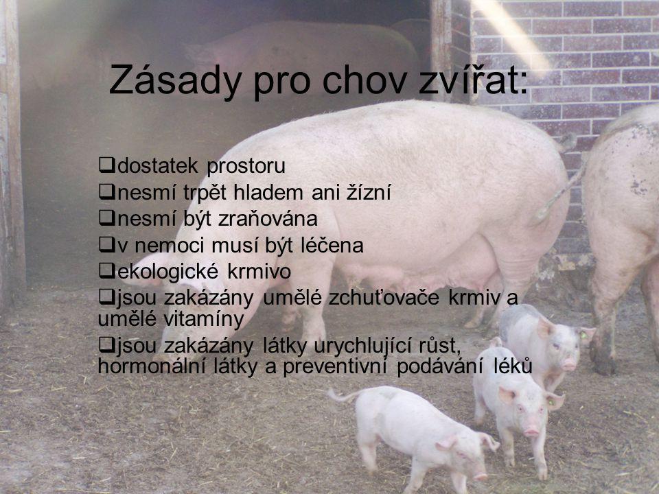 Zásady pro chov zvířat:  dostatek prostoru  nesmí trpět hladem ani žízní  nesmí být zraňována  v nemoci musí být léčena  ekologické krmivo  jsou