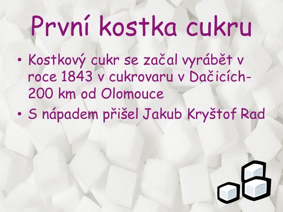 První kostka cukru • Kostkový cukr se začal vyrábět v roce 1843 v cukrovaru v Dačicích- 200 km od Olomouce • S nápadem přišel Jakub Kryštof Rad