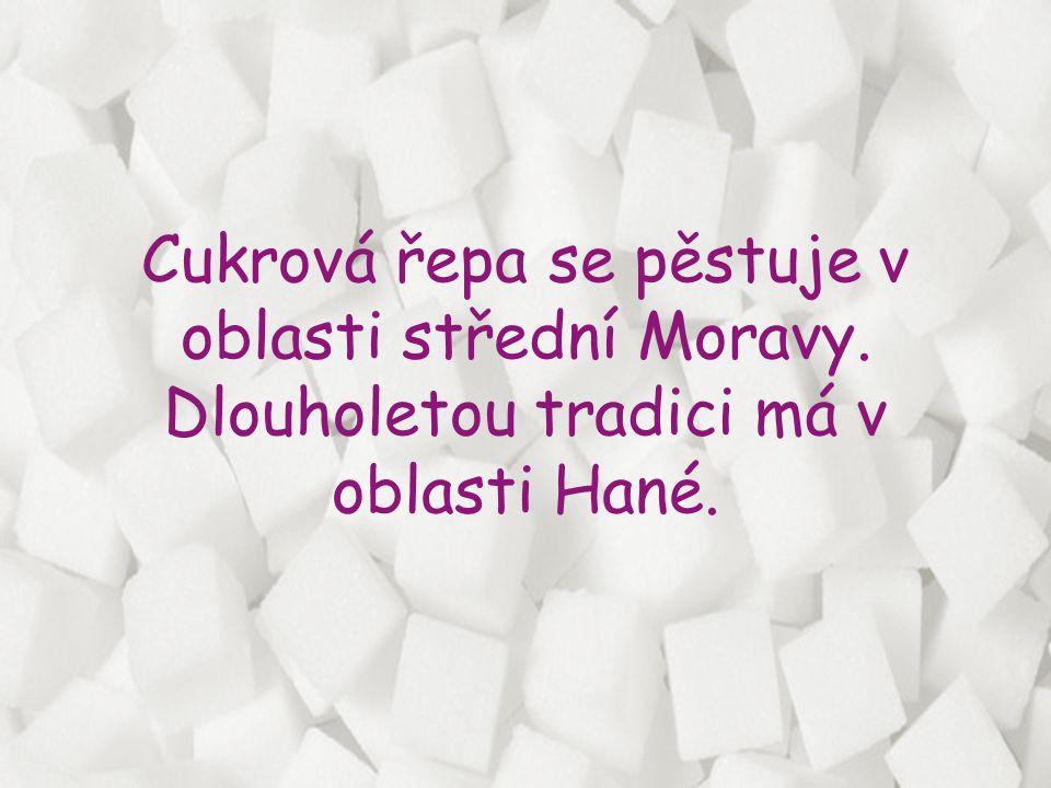 Cukrovary v ČR • Dobrovnice • České Meziříčí • Hrušovany nad Jevišovkou • Opava • Litovel • Prosenice • Vrbátky