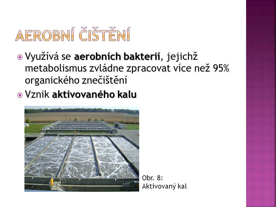 aerobních bakterií  Využívá se aerobních bakterií, jejichž metabolismus zvládne zpracovat více než 95% organického znečištění aktivovaného kalu  Vzn