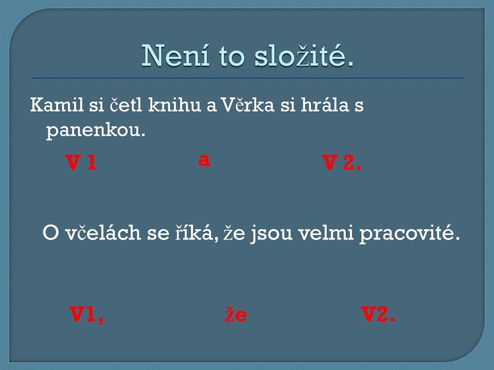 Kamil si č etl knihu a V ě rka si hrála s panenkou.