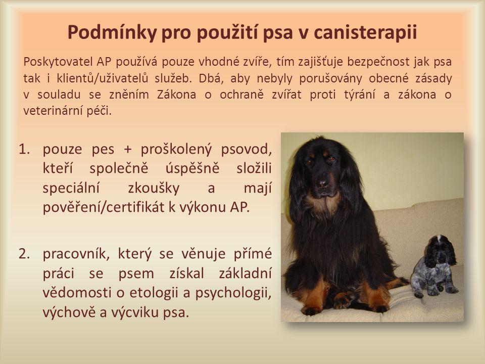 Podmínky pro použití psa v canisterapii 1.pouze pes + proškolený psovod, kteří společně úspěšně složili speciální zkoušky a mají pověření/certifikát k