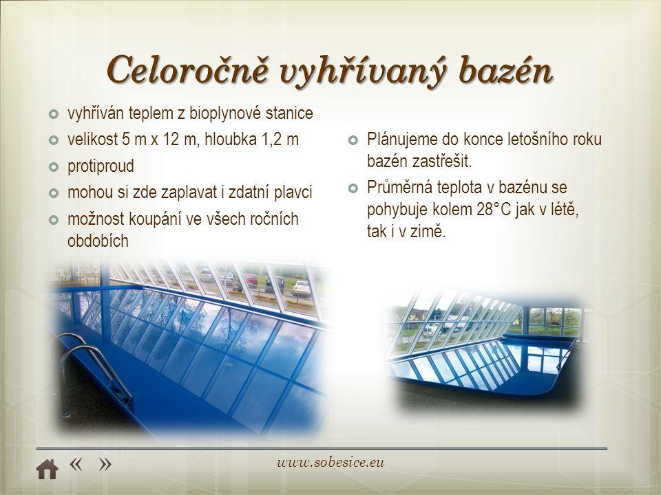 www.sobesice.eu  vyhříván teplem z bioplynové stanice  velikost 5 m x 12 m, hloubka 1,2 m  protiproud  mohou si zde zaplavat i zdatní plavci  možnost koupání ve všech ročních obdobích  Plánujeme do konce letošního roku bazén zastřešit.
