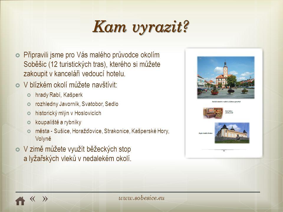 www.sobesice.eu  Připravili jsme pro Vás malého průvodce okolím Soběšic (12 turistických tras), kterého si můžete zakoupit v kanceláři vedoucí hotelu.