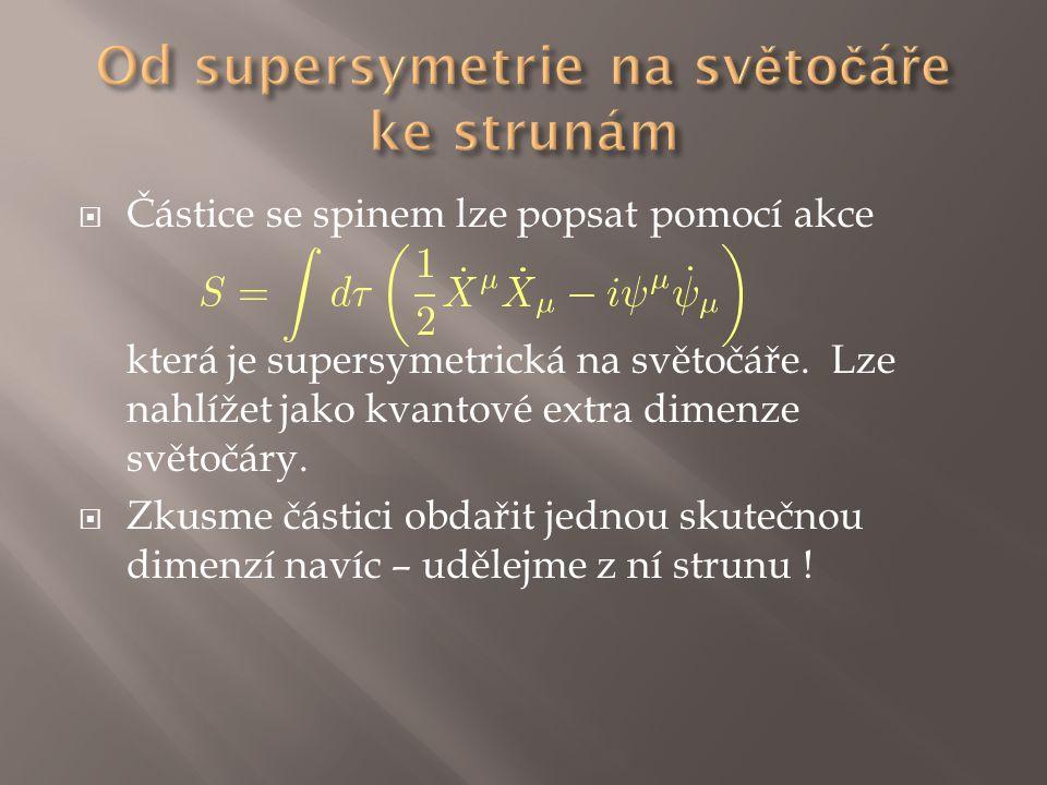  Částice se spinem lze popsat pomocí akce která je supersymetrická na světočáře. Lze nahlížet jako kvantové extra dimenze světočáry.  Zkusme částici