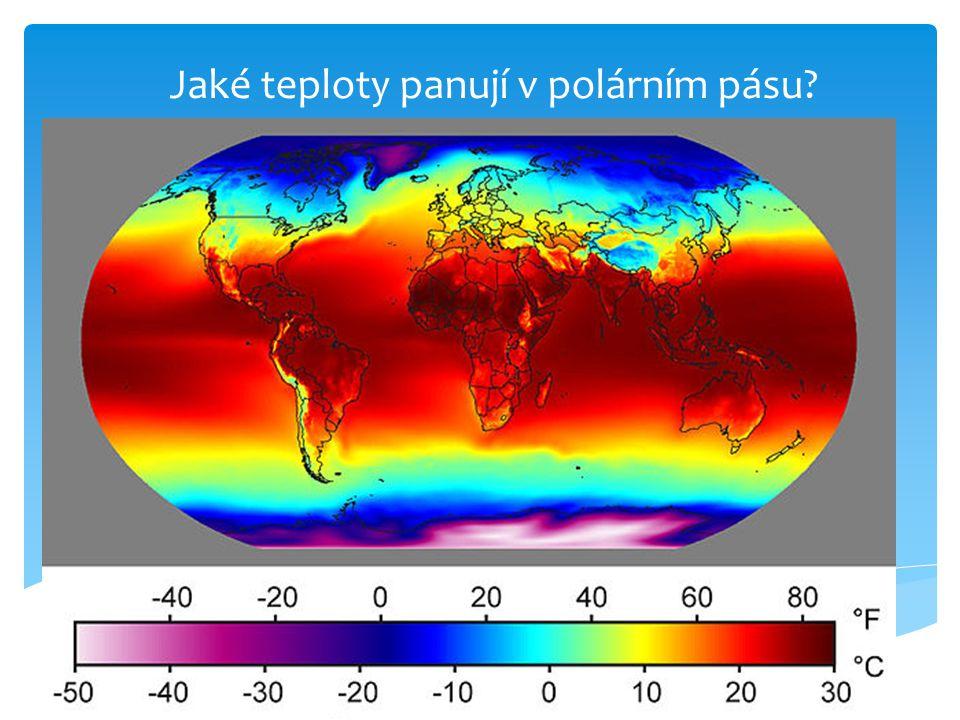 Jaké teploty panují v polárním pásu?